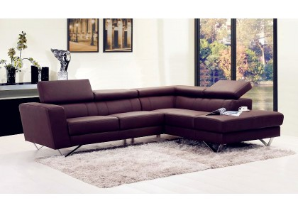 Real Leather Sectional Sofa (Brown)