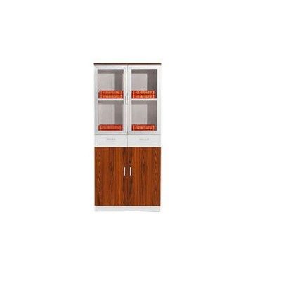 Contemporary Glass-door Bookcase